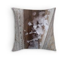 The Snow Between the Boards Throw Pillow