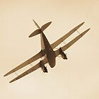 Vintage aircraft in flight by Martyn Franklin