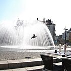 Fountain Flight by abiburt