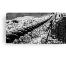Iceland Icy Rope Fence  Canvas Print