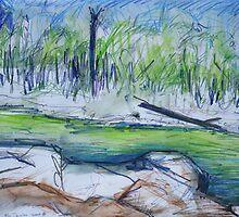 Big Crystal Creek by John Douglas