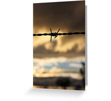 Barbed Wire Sunset Greeting Card