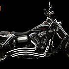 Harley Davidson Dyna  by Kerrod Sulter