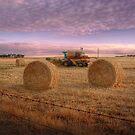 Make Hay While The Sun Shines - Murray Bridge, South Australia by Mark Richards