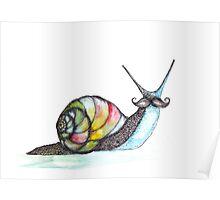 Funky Moustache Snail Poster