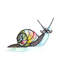Funky Moustache Snail Photographic Print