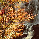AUTUMN, CALASAJA FALLS by Chuck Wickham