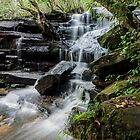 Lower Falls, (Somersby, Brisbane Water National Park NSW, Australia) by Isabel J Coote Photography