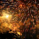Fireworks Over the Livonia Spree by Phillip DePetro