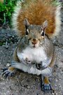 Wha'cha Got For Me Today? by Gene Walls