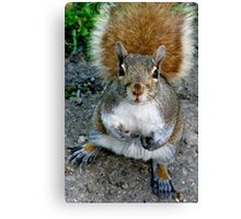 Wha'cha Got For Me Today? Canvas Print