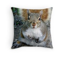 Wha'cha Got For Me Today? Throw Pillow
