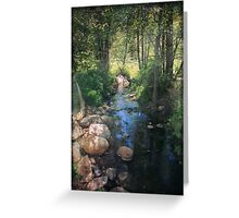 Until I Loved You Greeting Card