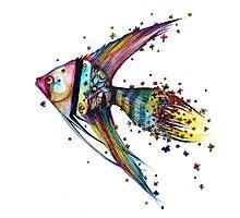 Angel Fish Photographic Print