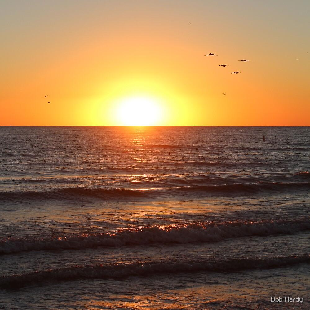 Madeira Sunset by Bob Hardy