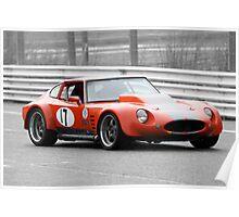 Bolwell Mk7 Racing at Sandown Poster