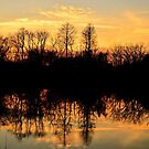 Gwynbrook Sunset by Robin Lee