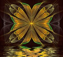 Reflections by Pam Amos