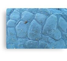 Bubble rocks Canvas Print