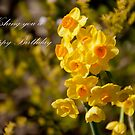 Happy Daffodils by Robyn Selem