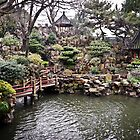 China - Shanghai Yu Gardens (Yu Yuan) by Derek  Rogers