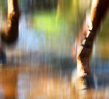 Flashing Hooves by Peter Evans