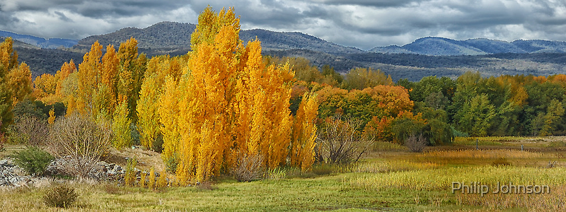 Autumn Splendour - Tumut NSW Australia - The HDR Experience by Philip Johnson