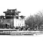 China - Beijing - Summer Palace and Lake by Derek  Rogers