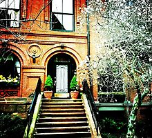 Boston Townhouse by Frank Donahue Photographic Print