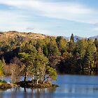 'The ever beautiful, Tarn Howes' by Mark Battista