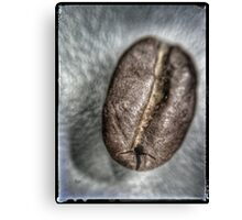 Coffee Bean Canvas Print
