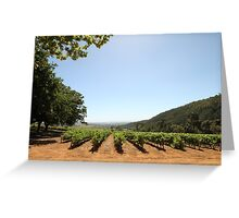 Delheim Winefarm Cape Town Greeting Card