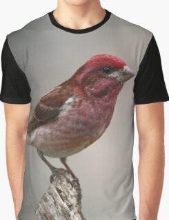 Purple Finch portrait Graphic T-Shirt