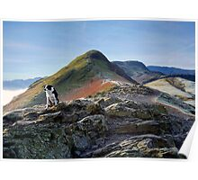It's a dogs life on the footpath to Catbells Poster