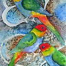 Rainbow parrot by Karin Zeller