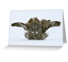 Fluff and puff Greeting Card