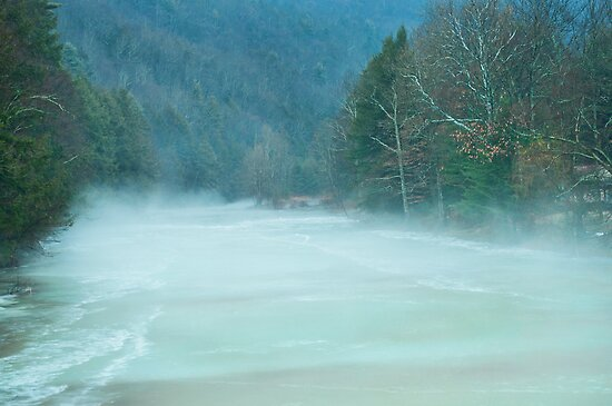 Foggy day in the valley by Penny Rinker