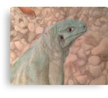 Sarcastic Scales Canvas Print