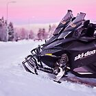 Snowmobiles by Tim Topping