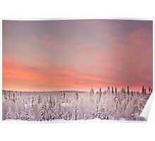Sunset Lapland Poster