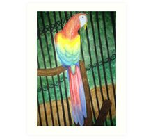 Parrot's Create the Rainbow Art Print