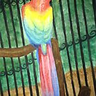 Parrot's Create the Rainbow by Brittany Alms