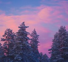 Snow and sunset by Tim Topping