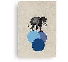 elephant balance Canvas Print