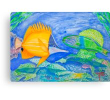 tropical fish. yellow and parrott fish. peixe papagaio Canvas Print