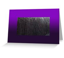 Glimmering Spring (2) Greeting Card