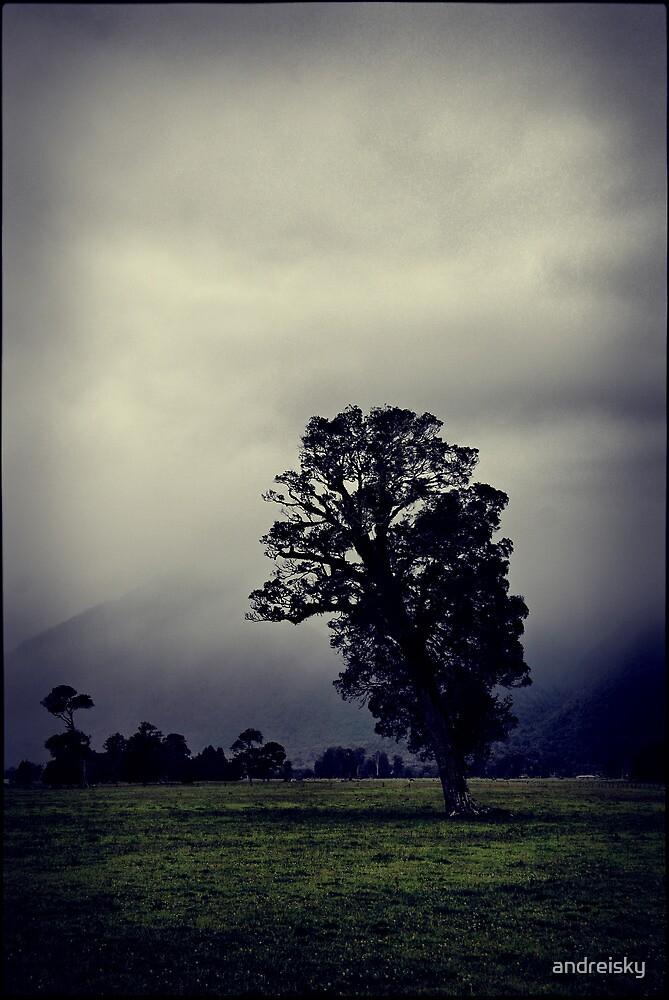 A tree by andreisky