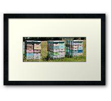 beehives 3 Framed Print