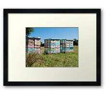 beehives 4 Framed Print