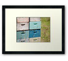 beehives 5 Framed Print